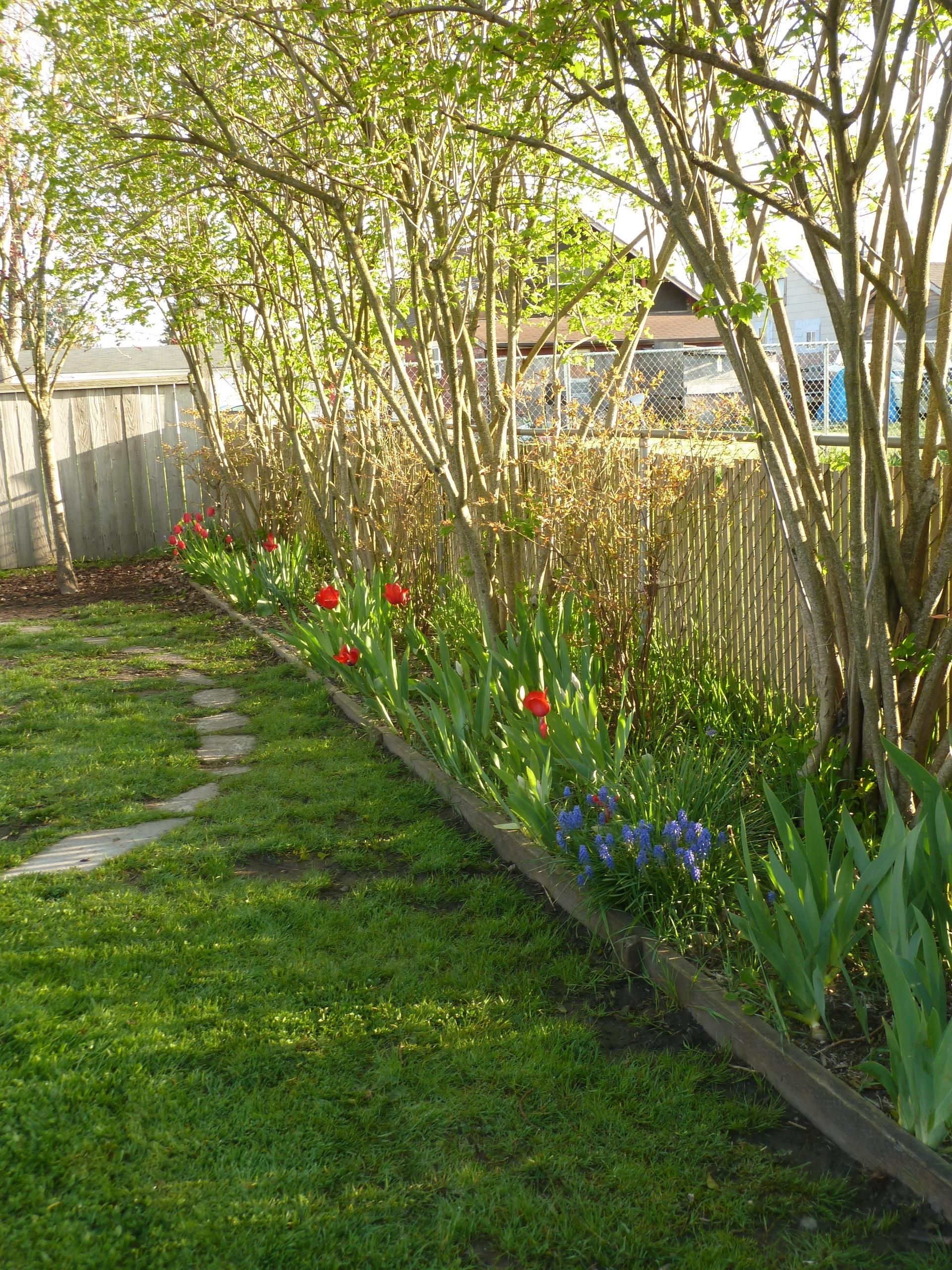 Sundborn Children's House | garden 01 O.JPG