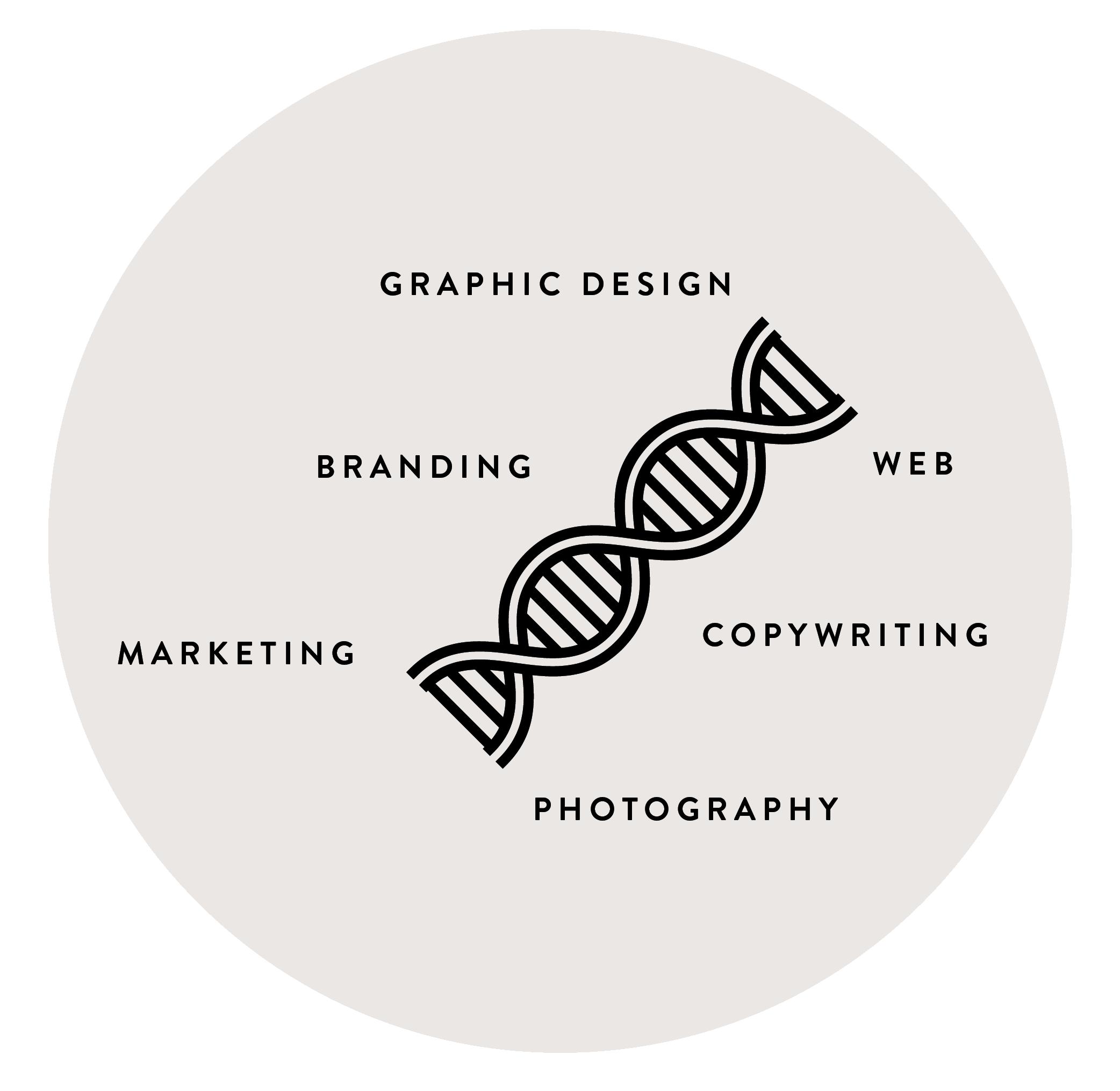 Graficos_3-03.png