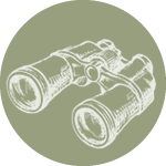 4.seo-binoculars.png