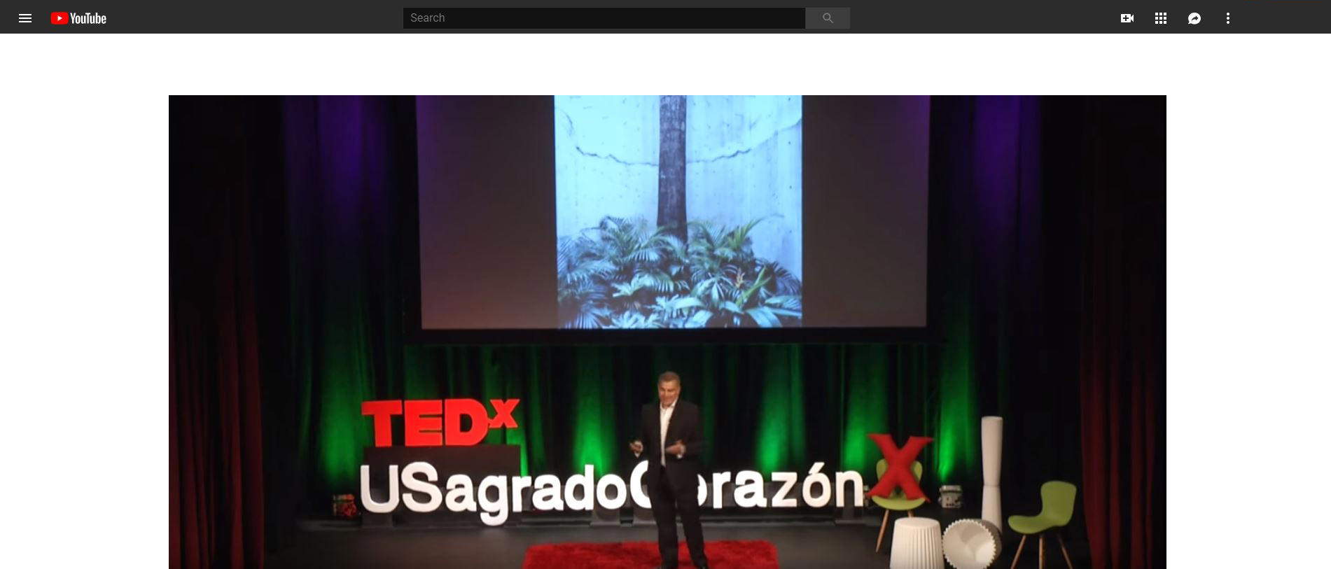 10. TedX (Fuster).JPG