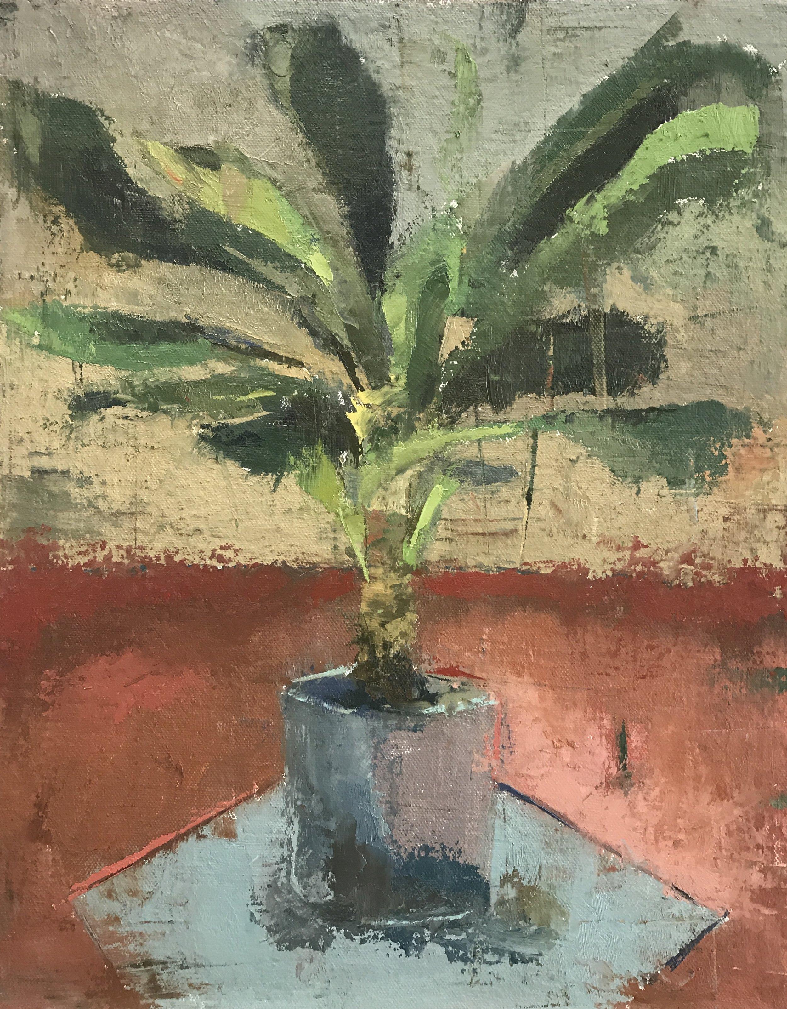 Corn Plant (alla prima)