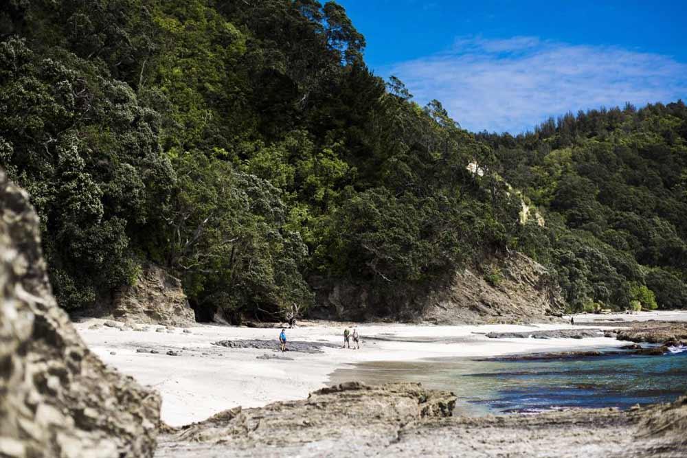 otarawairere-beach.jpg