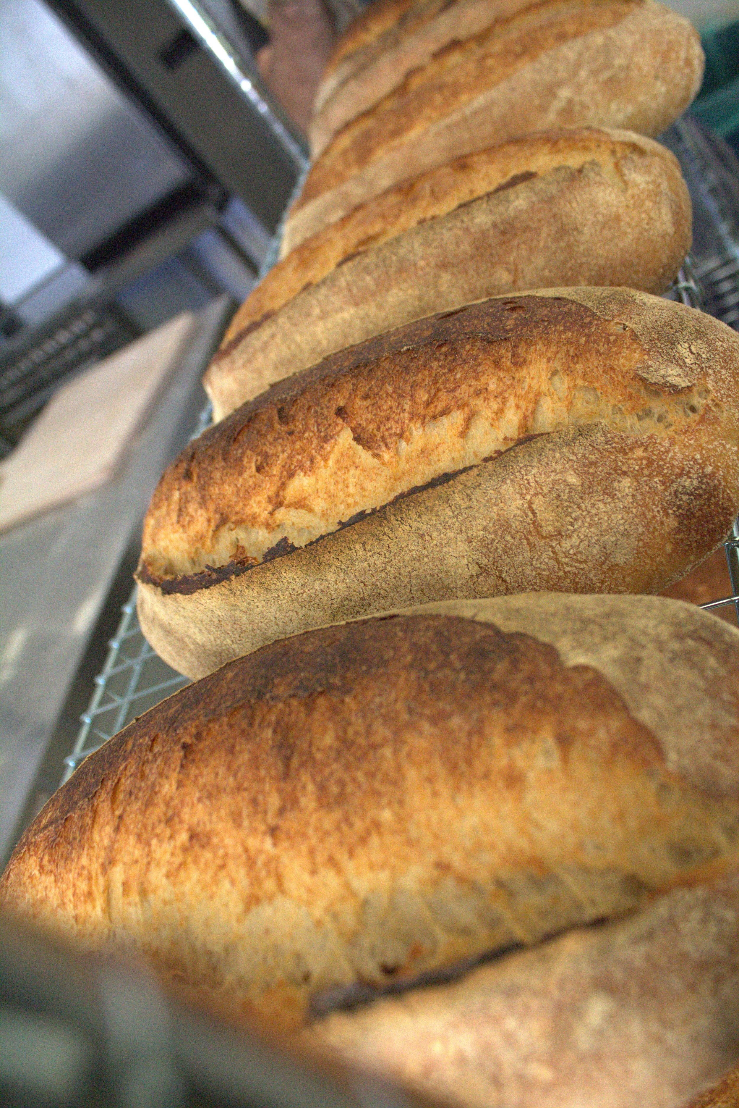 Real bread, made local -