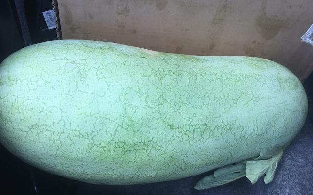 edmonson-watermelon.png