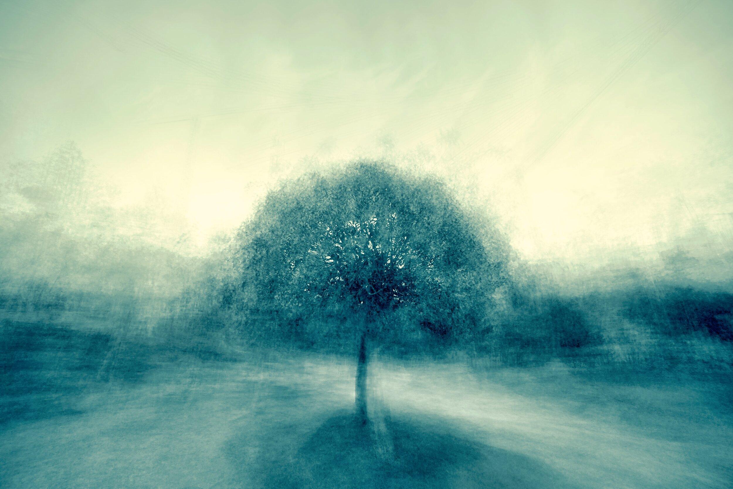 Coaching de Mindfulness - Click na imagem para mais informações