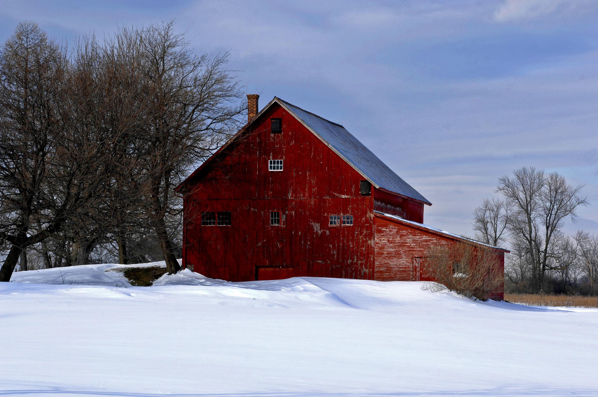 Snowy Barn 1.jpg