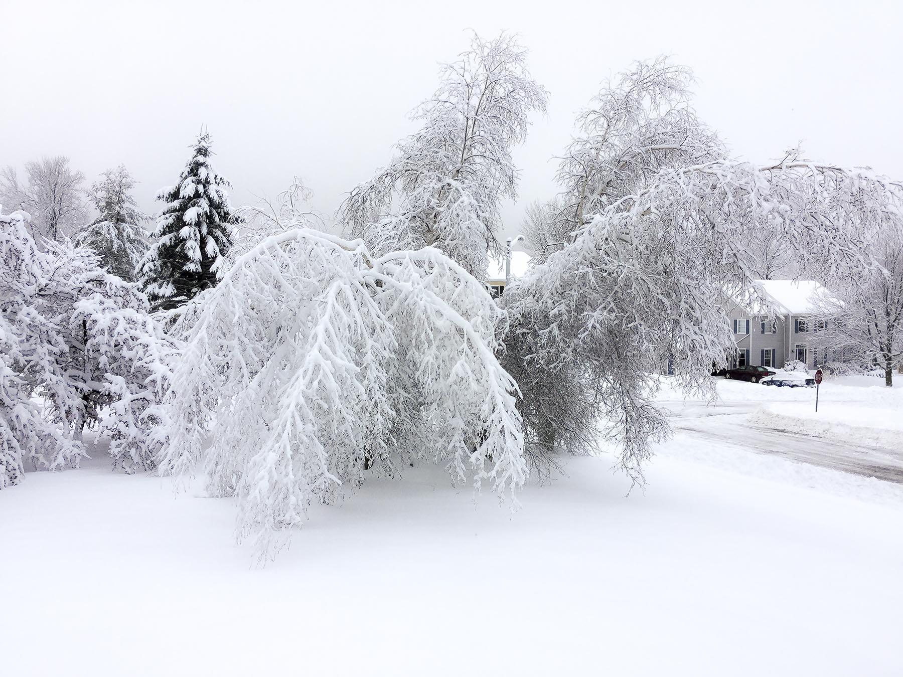 Vermont Winter 1.jpg