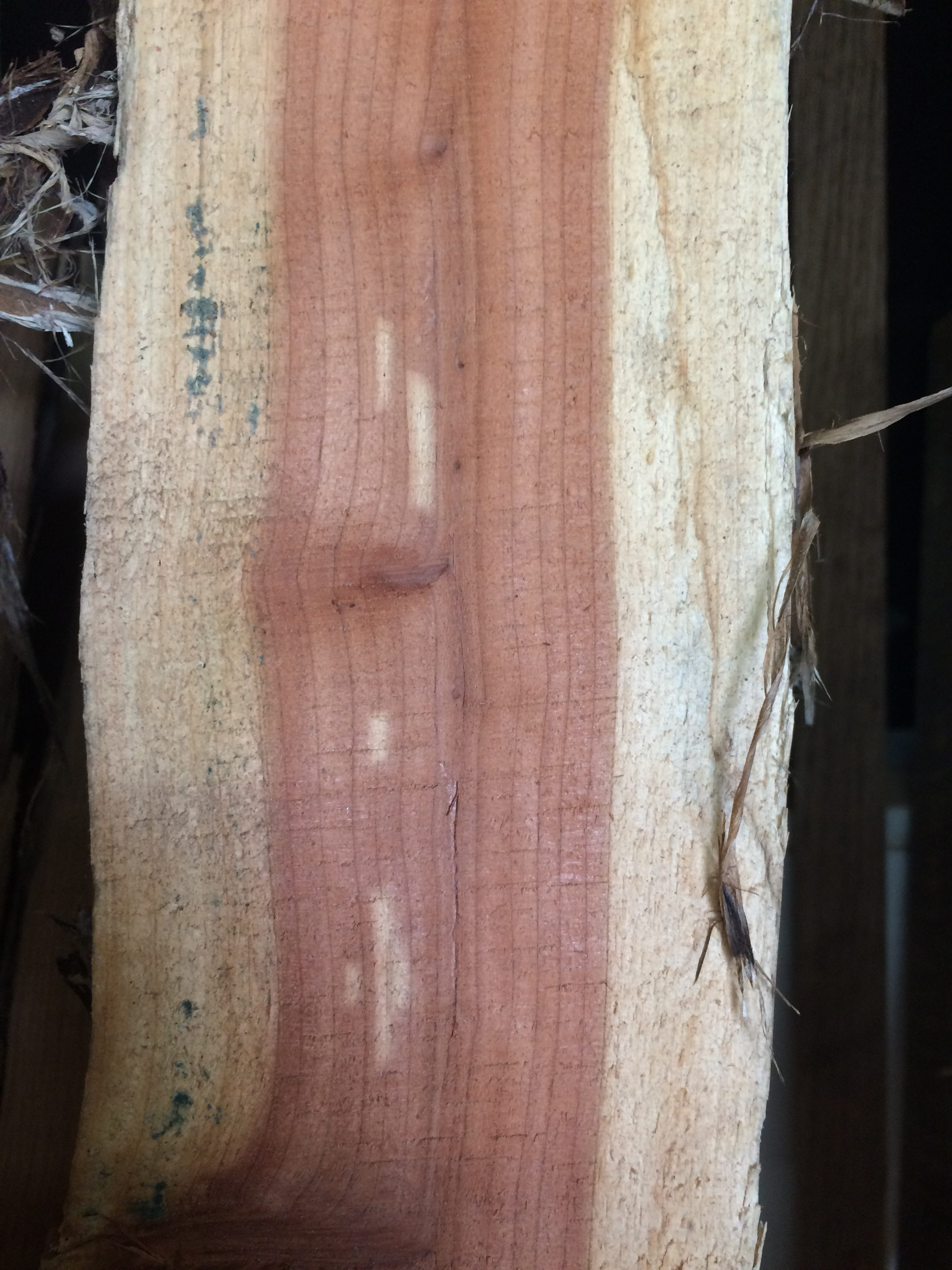 CEDAR - Cedar is light and porous. It stands up against moisture and pests well compared to other woods.