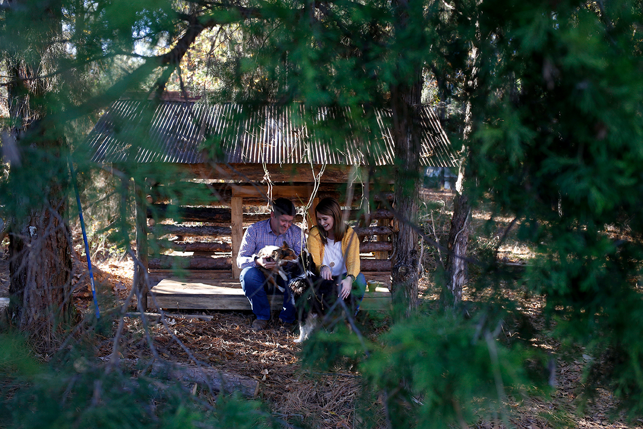 mini-cabin-couple-and-dogs-mini-session-family-documentary-photography-north-mississippi.jpg