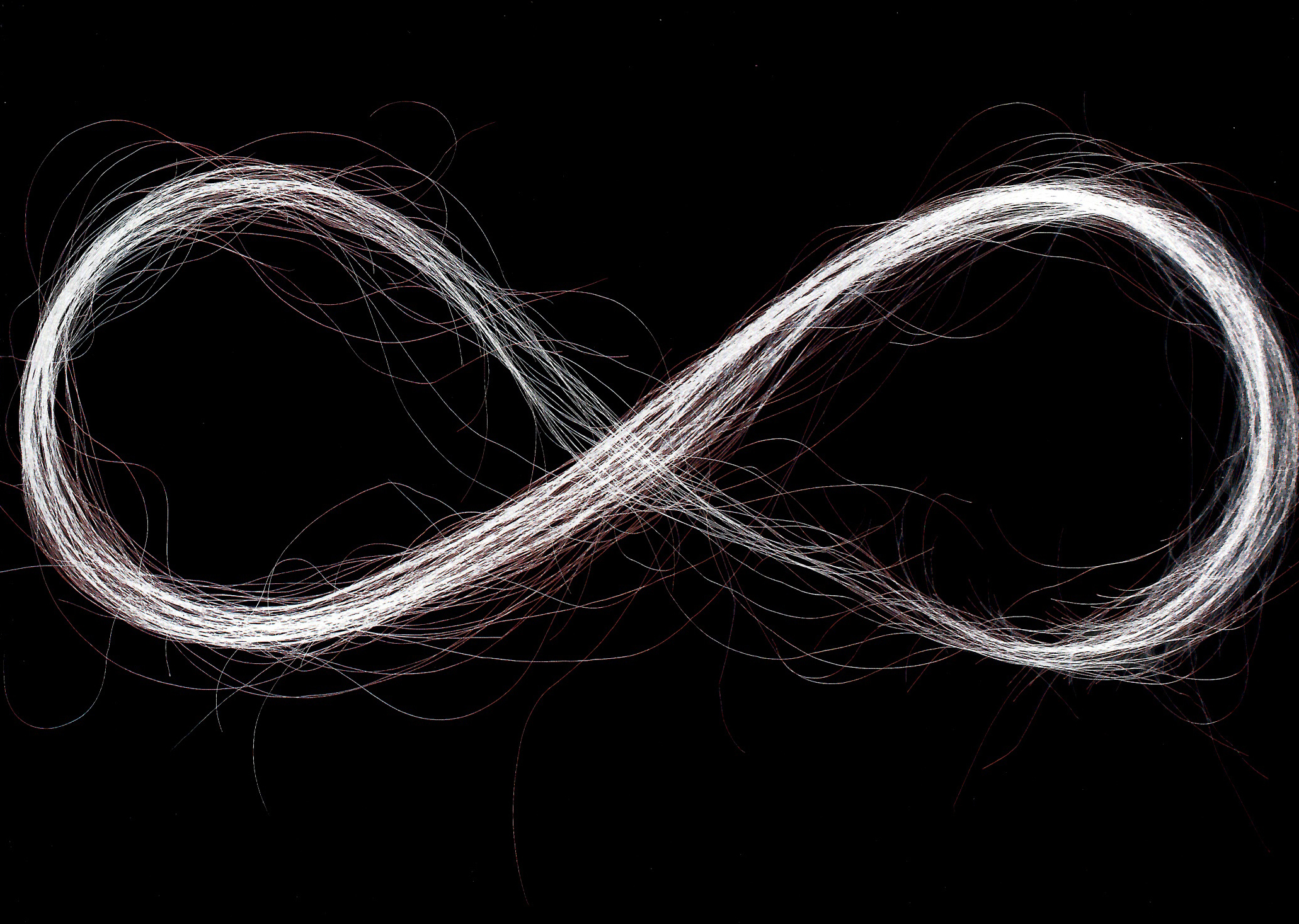 """Infinity Inverted"", 2004, human hair scanned, printed on archival paper, 24 x 30 inches"