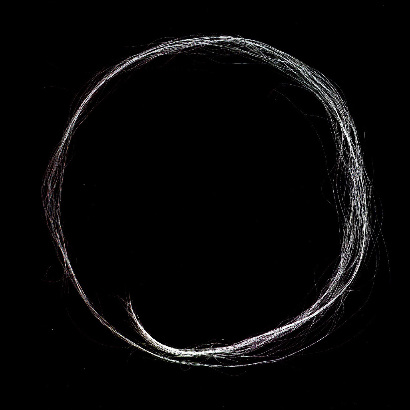 """Centrada"", 2003, human hair scanned, printed on archival paper, 24 x 24 inches"