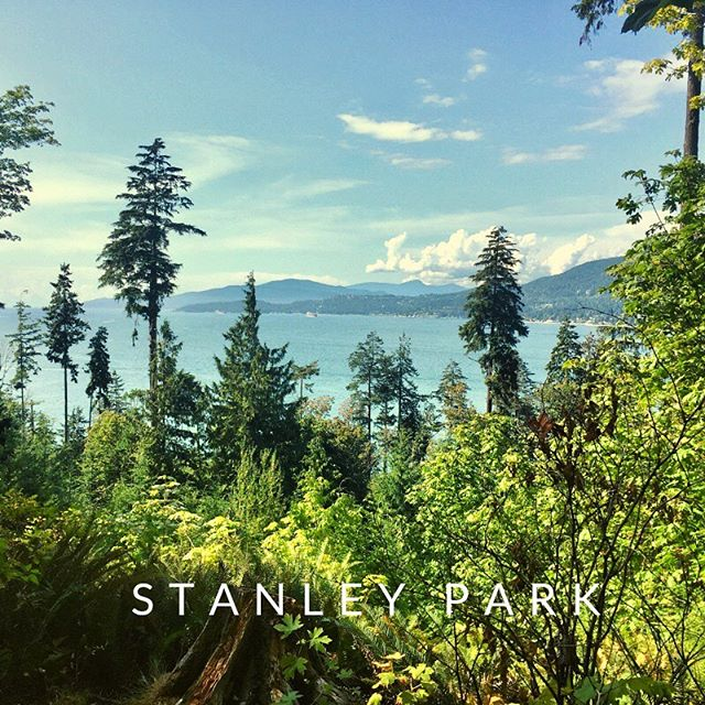 Blissfully lost in #StanleyPark #trailrunning My plan is to strategically run 3x a week for the next 2 months and see if my body is capable of working towards the Montane Yukon Arctic Marathon the end of January 2020 with @greenyukon Today was a light and easy 10k that felt great! But I'm going to consult with my dream team to keep me in check during this process🙌  @juliewalton.health @refocusyourself @ts_osteopathy @outside_step @una_luna_azul
