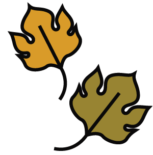 maple-leaves.png
