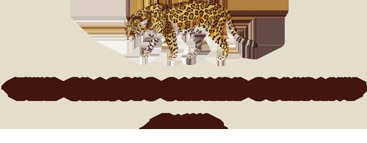 the-classic-safari-company.png