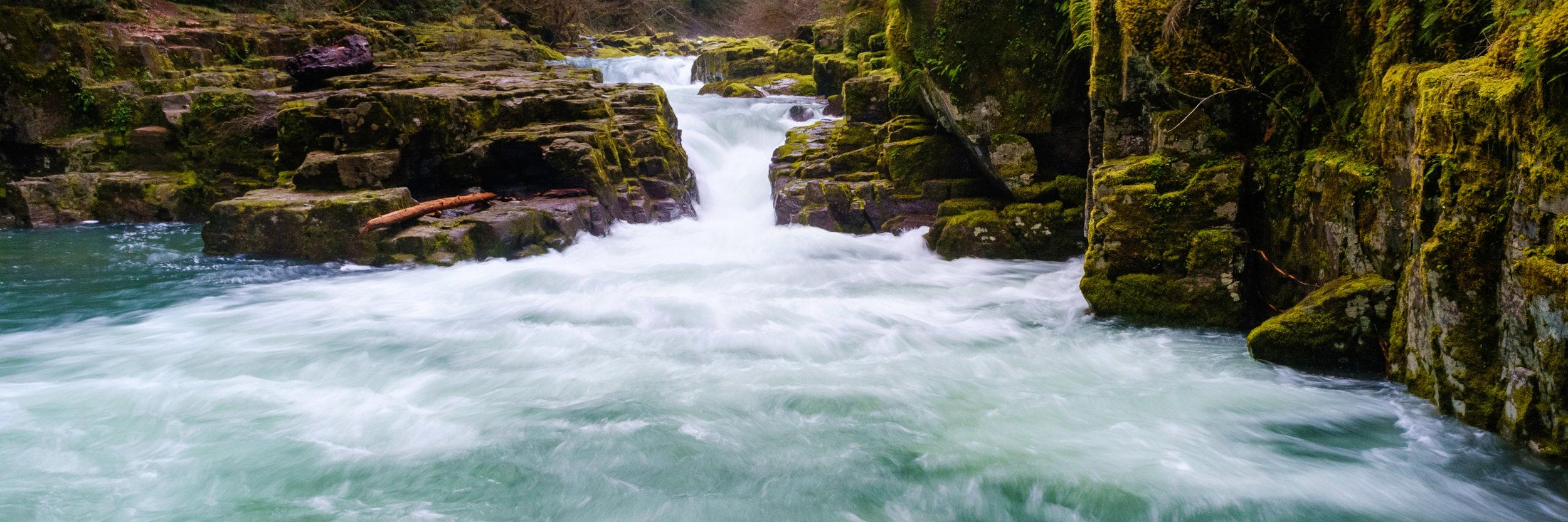 Brice Creek_2014 - -71-20140308_Brice_Creek_Oregon_0023.jpg