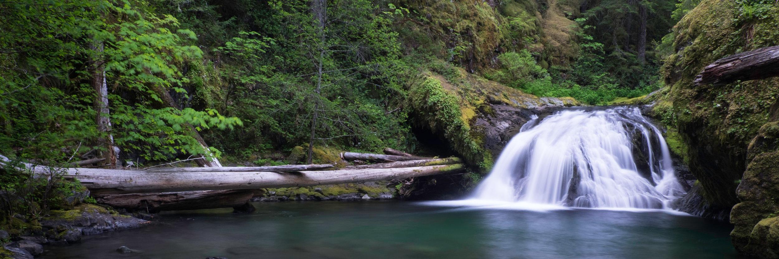 Brice Creek Pool Falls_2014 - -165-20140601_Brice_Creek_0166.jpg