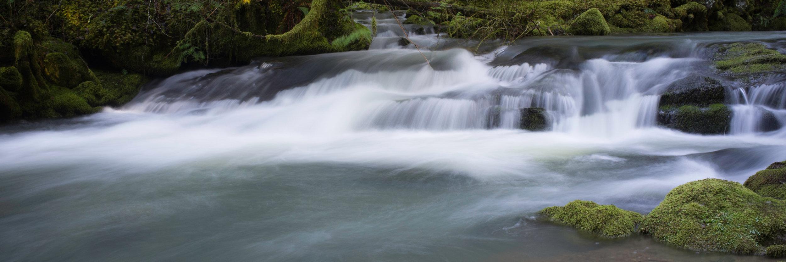 Larison Creek_2014 - -60-20140222_Larison_Creek_Oregon_0006.jpg