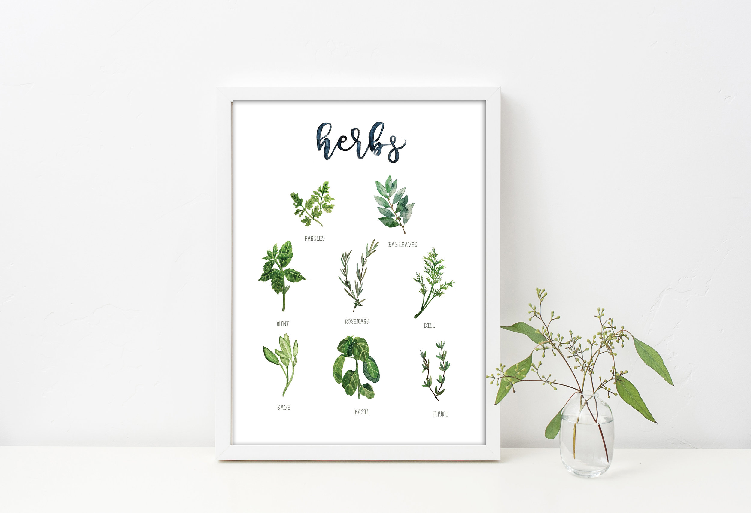 The Herb Collection - Parsley, Bay Leaves, Mint, Rosemary, Dill, Sage, Basil, Thyme, and the full collection