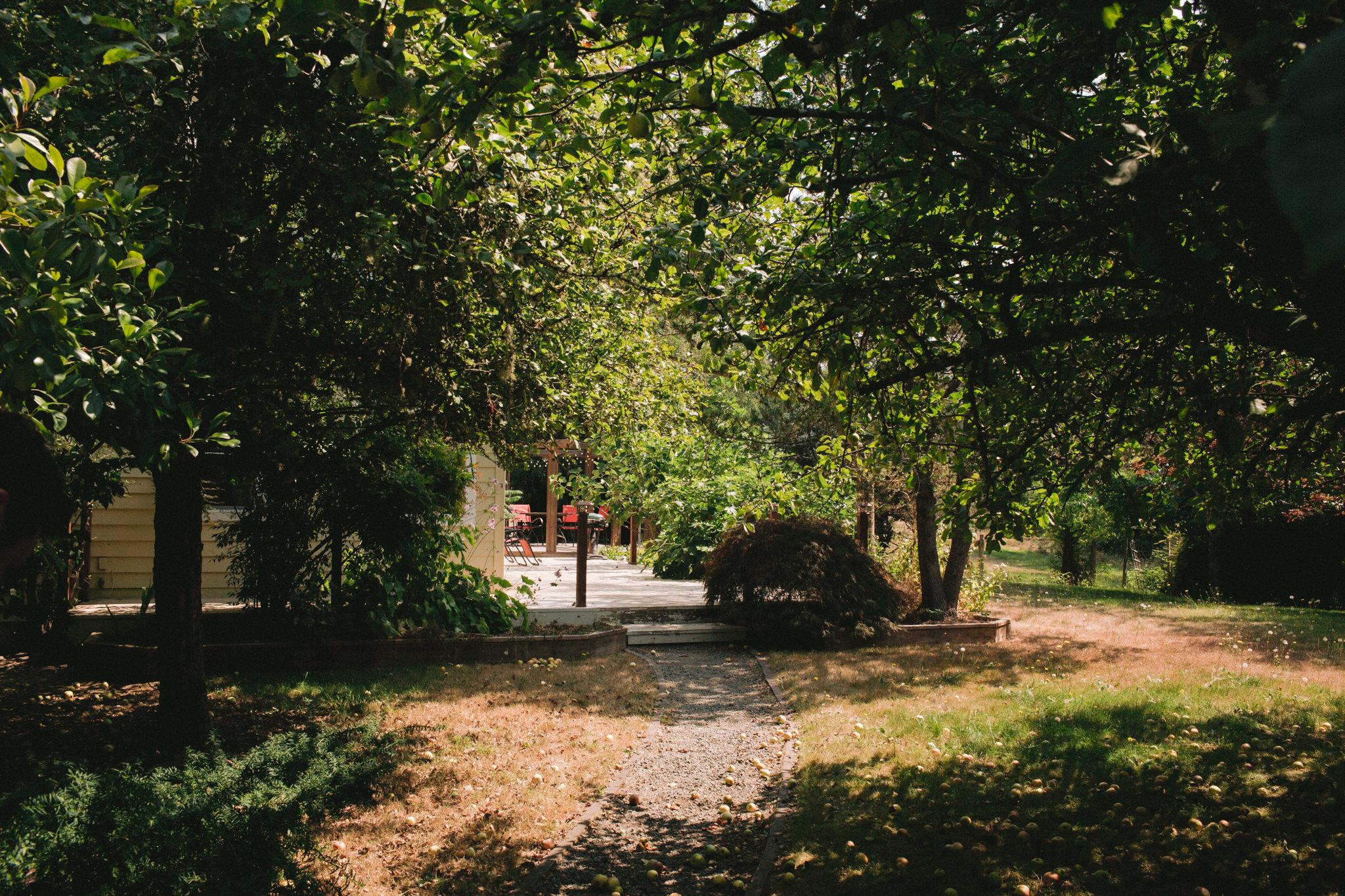 Backyard-Bainbridge-Island-Wedding-Alycia-Lovell-Photography-3.JPG