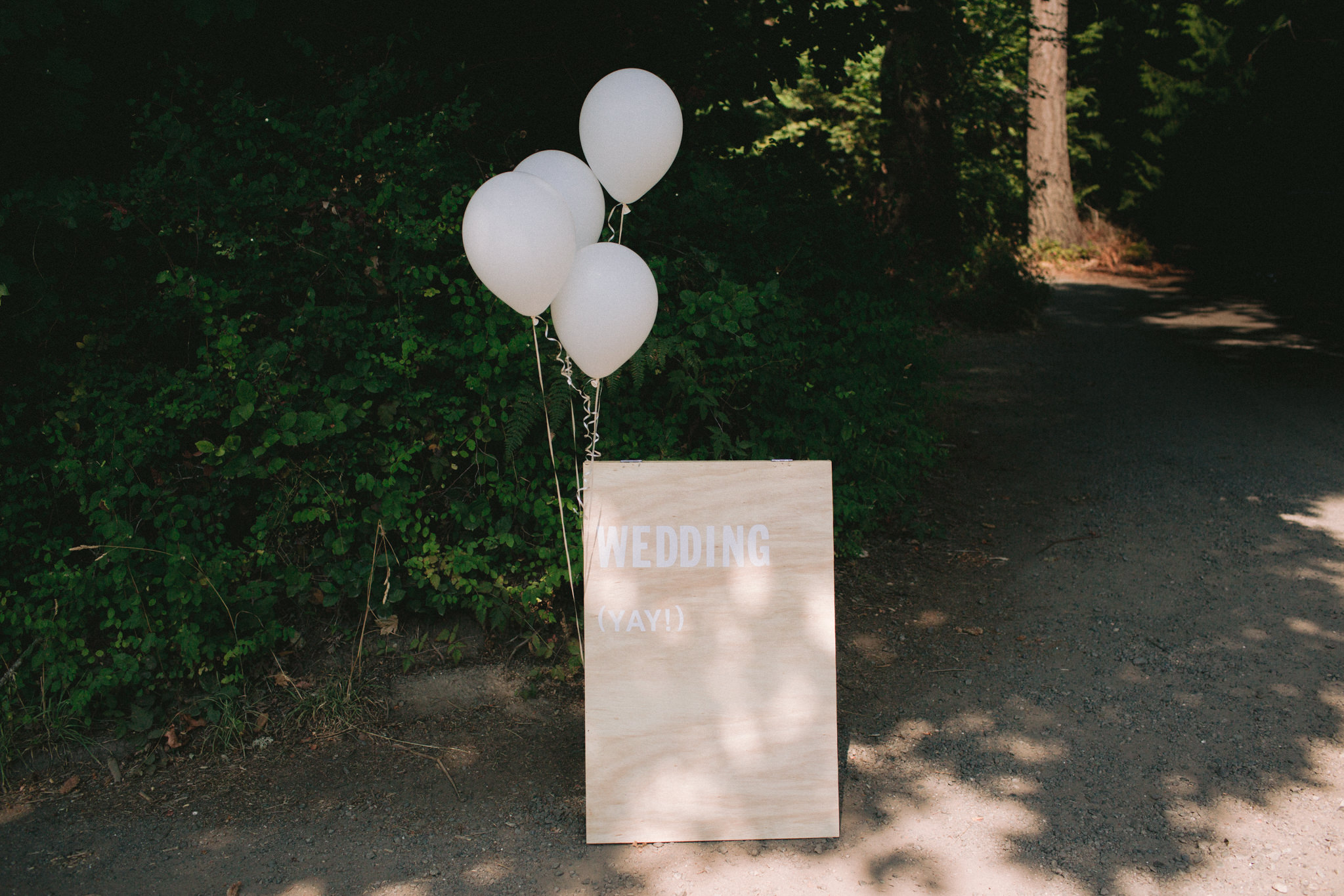 Backyard-Bainbridge-Island-Wedding-Alycia-Lovell-Photography-7.JPG