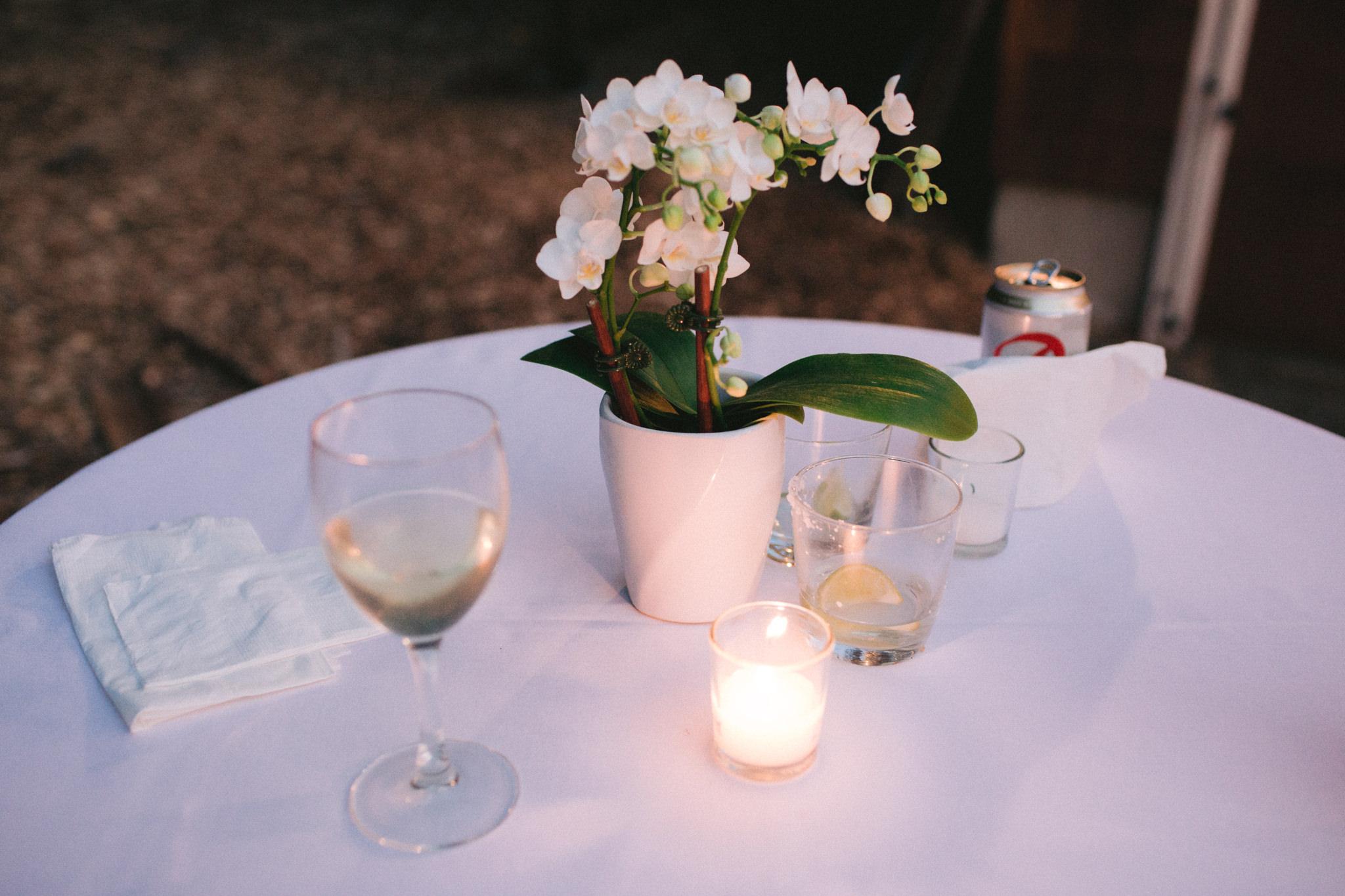 Backyard-Bainbridge-Island-Wedding-Alycia-Lovell-Photography-249.JPG