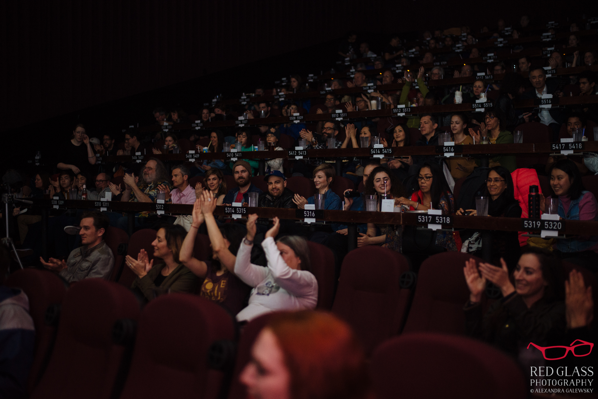 Audience in a theater clapping and watching a performance.