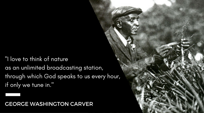 "George Washington Carver looking at plants in a field. ""I love to think of nature as an unlimited broadcasting station, through which God speaks to us every hour, if only we tune in."" -George Washington Carver"