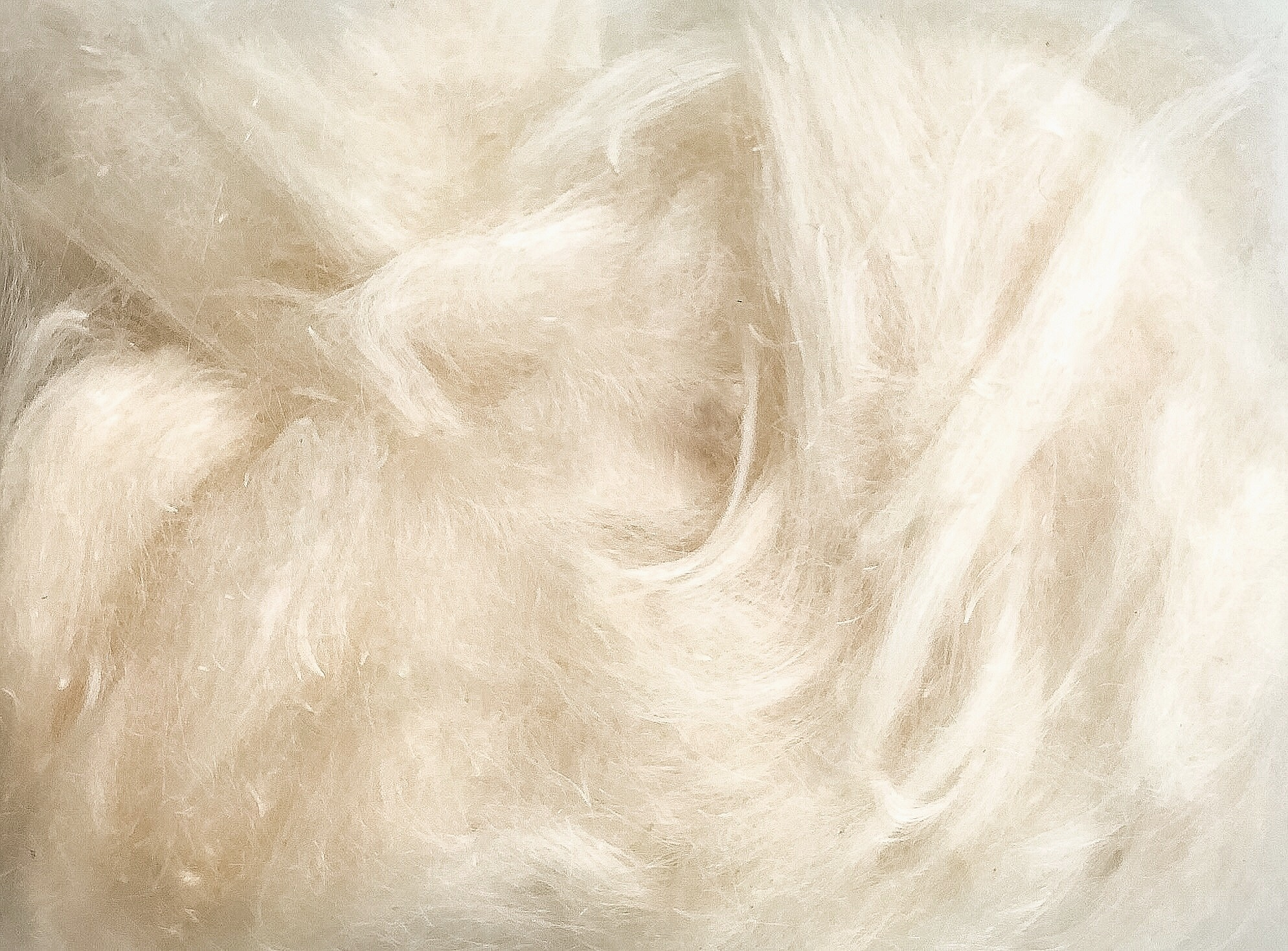 raw milkweed fibers