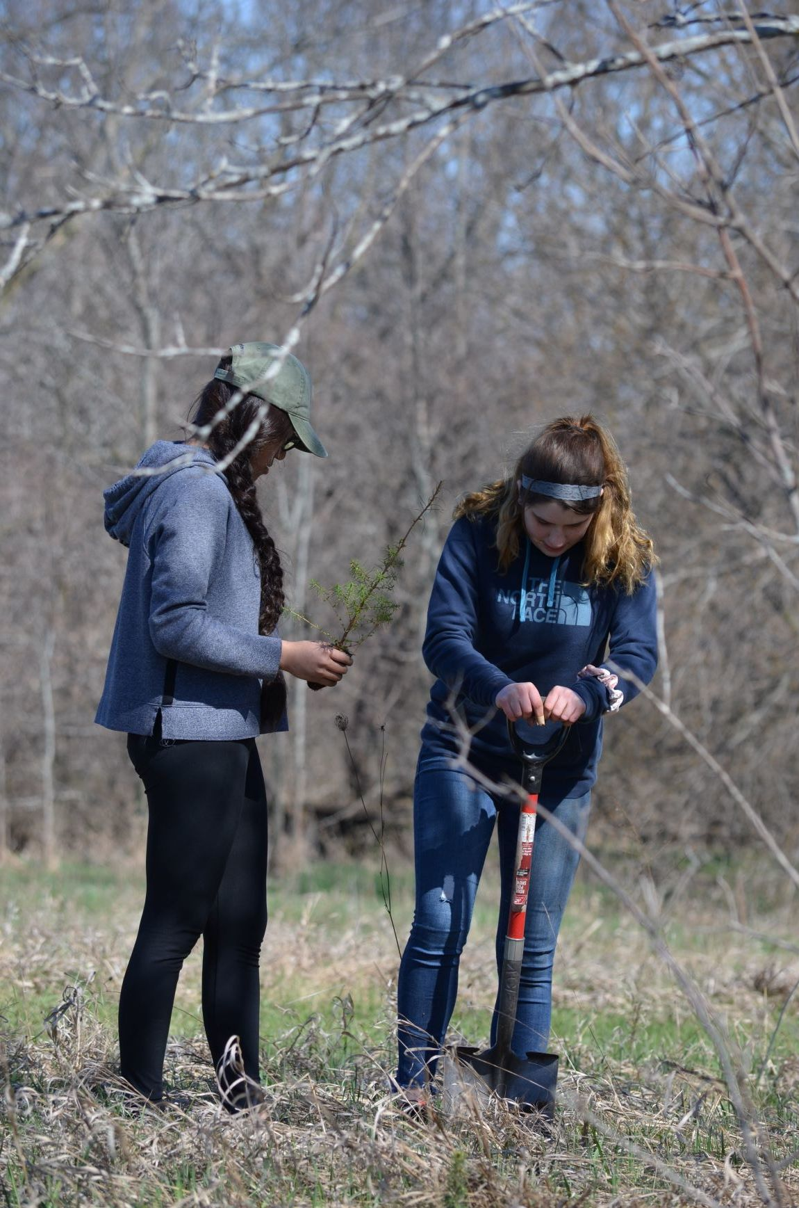 Dave Tupa's Southern Door Earth Science students plant trees in Sturgeon Bay, WI on April 26, 2019.