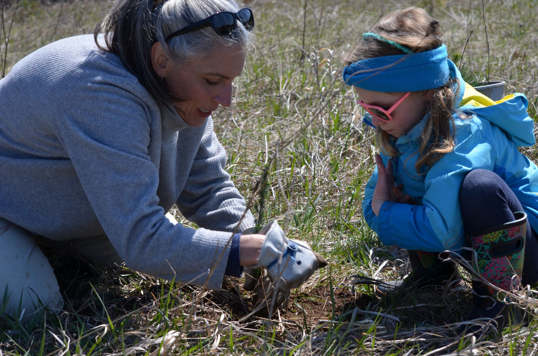 Christina Studebaker volunteers to plant trees at the Spring Public Tree Planting in Ellison Bay, WI on April 26, 2019.