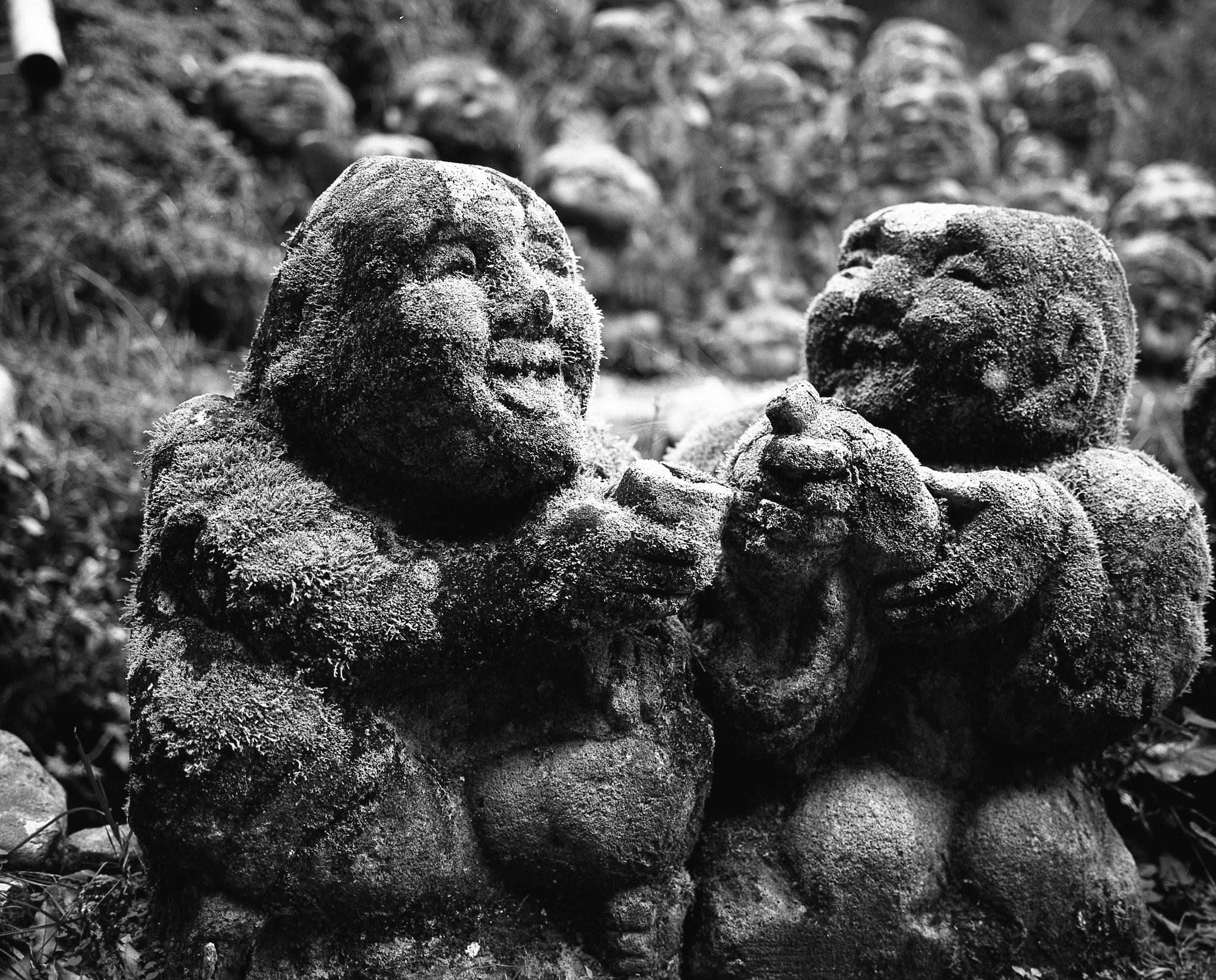 Statues at Otagi Nenbutsu-ji in Kyoto - old friends, frozen in time (Mamiya 7ii Ilford HP5+)