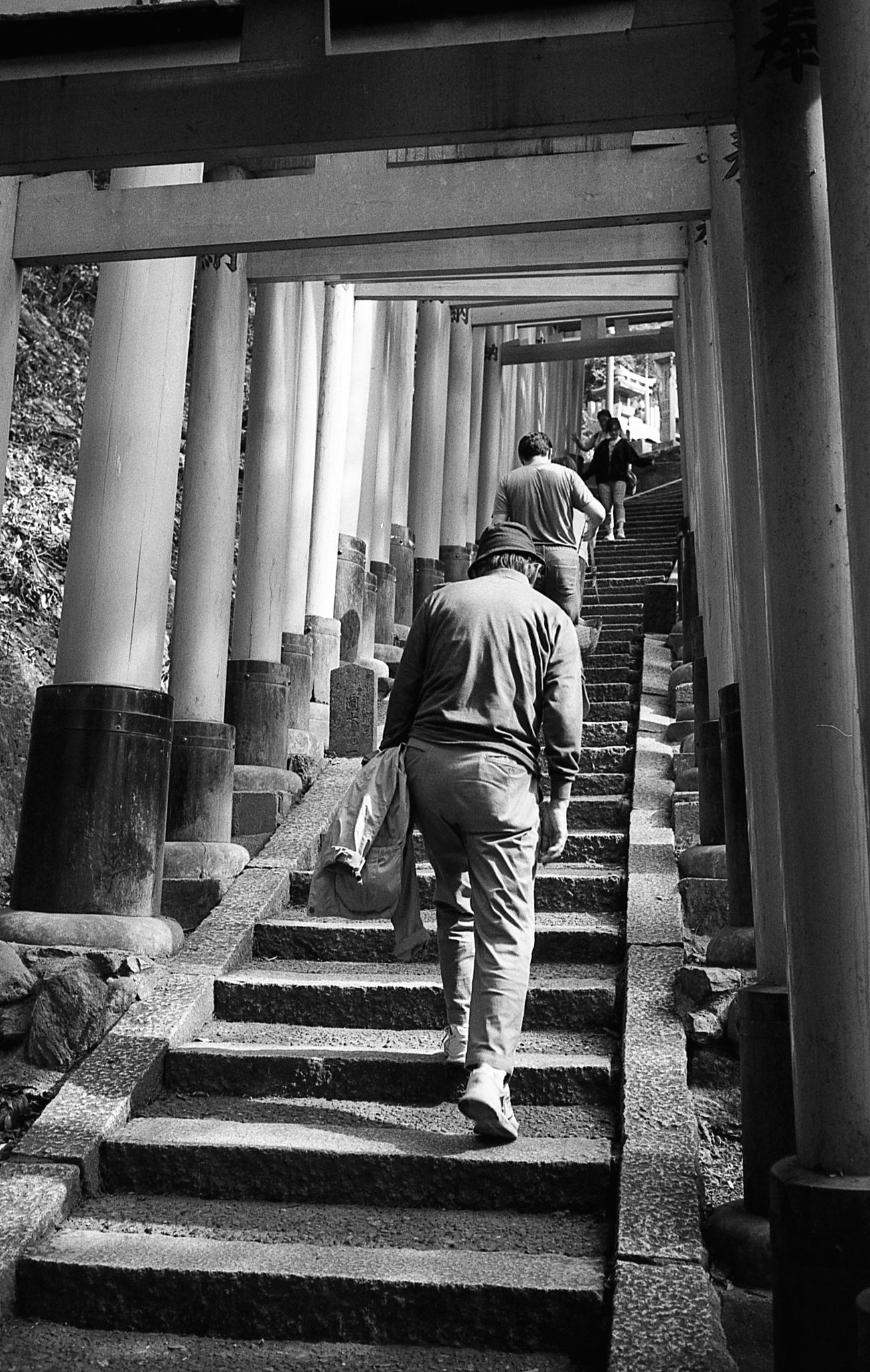 Climbing Fushima Inari Taisha in Kyoto (Olympus Mju-II Ilford HP5+)