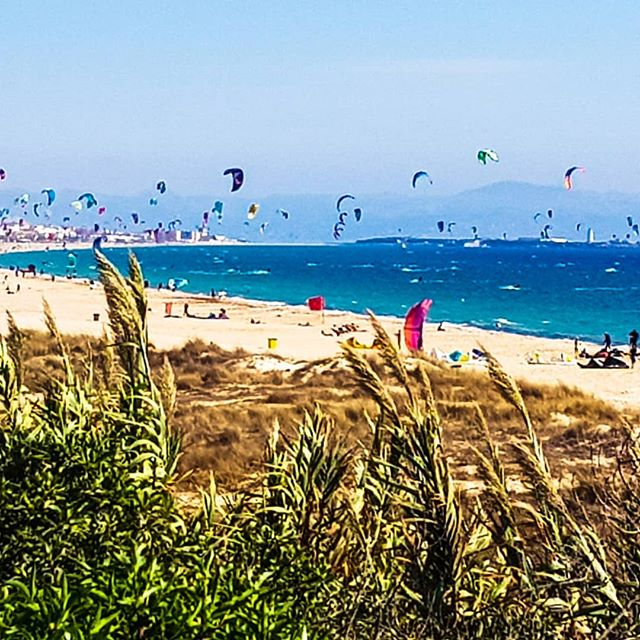 Tarifa! A kitesurfer's paradise! 🏄‍♂️🌬⛵☀️⛱🌄🇪🇸 ... With Moroccan hills in the background 🇲🇦 #bellavita #windhuter #surferlife #summertime #surfing #kitesurfing #tarifa #holidays #windsurfing #extremesports
