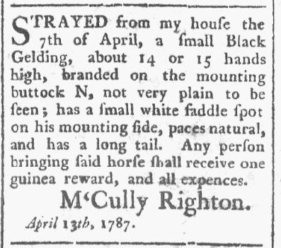 Charleston Morning Post, April 13th 1787.PNG
