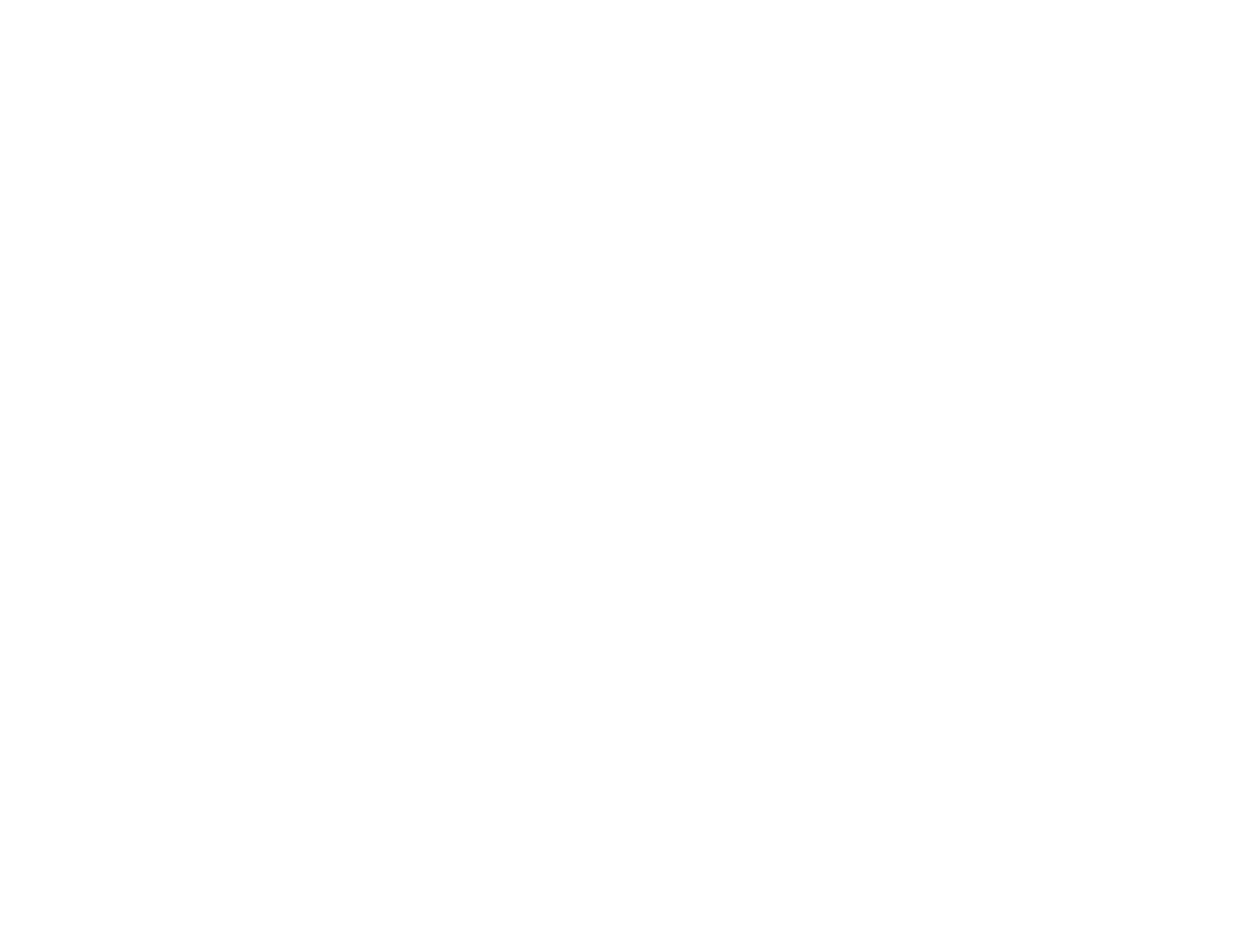 BVT Logo.png