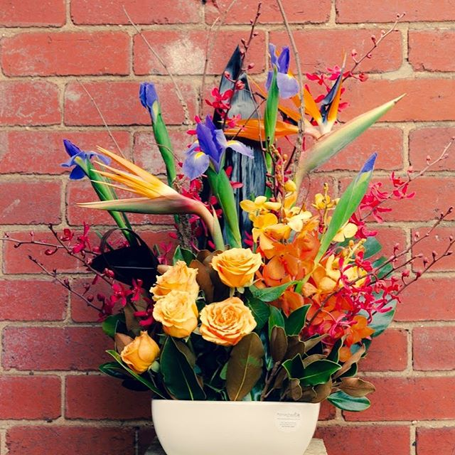 This beautiful arrangement is gracing some lucky persons entrance way. #panacheflowers #flowersofmelbourne #melbourneflorists #beautifulflowers💐