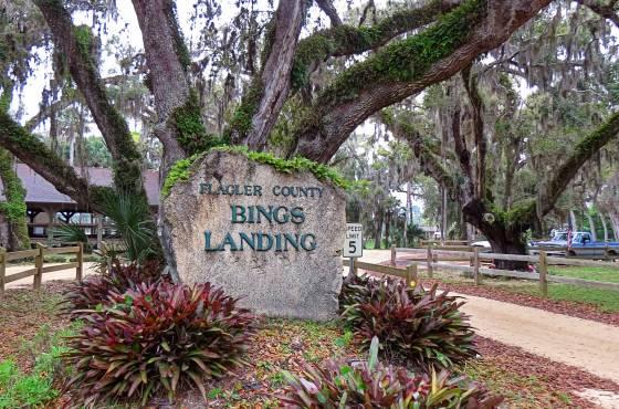 bings landing fishing.jpg