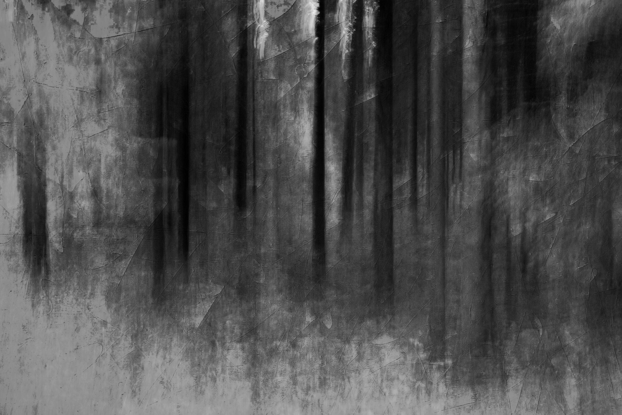 Forest bw 2019-4(Texture light).jpg