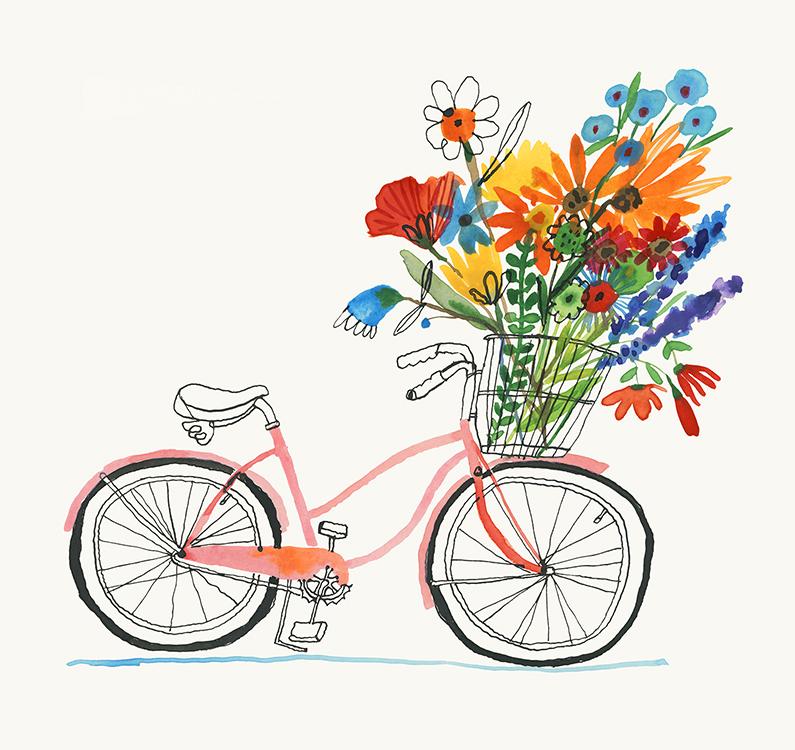 Carolyn_PP_BikeBasket2.jpg