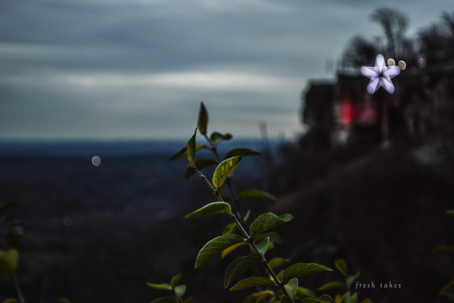 Christmas at Rock City Gardens, Lookout Mountain, GA