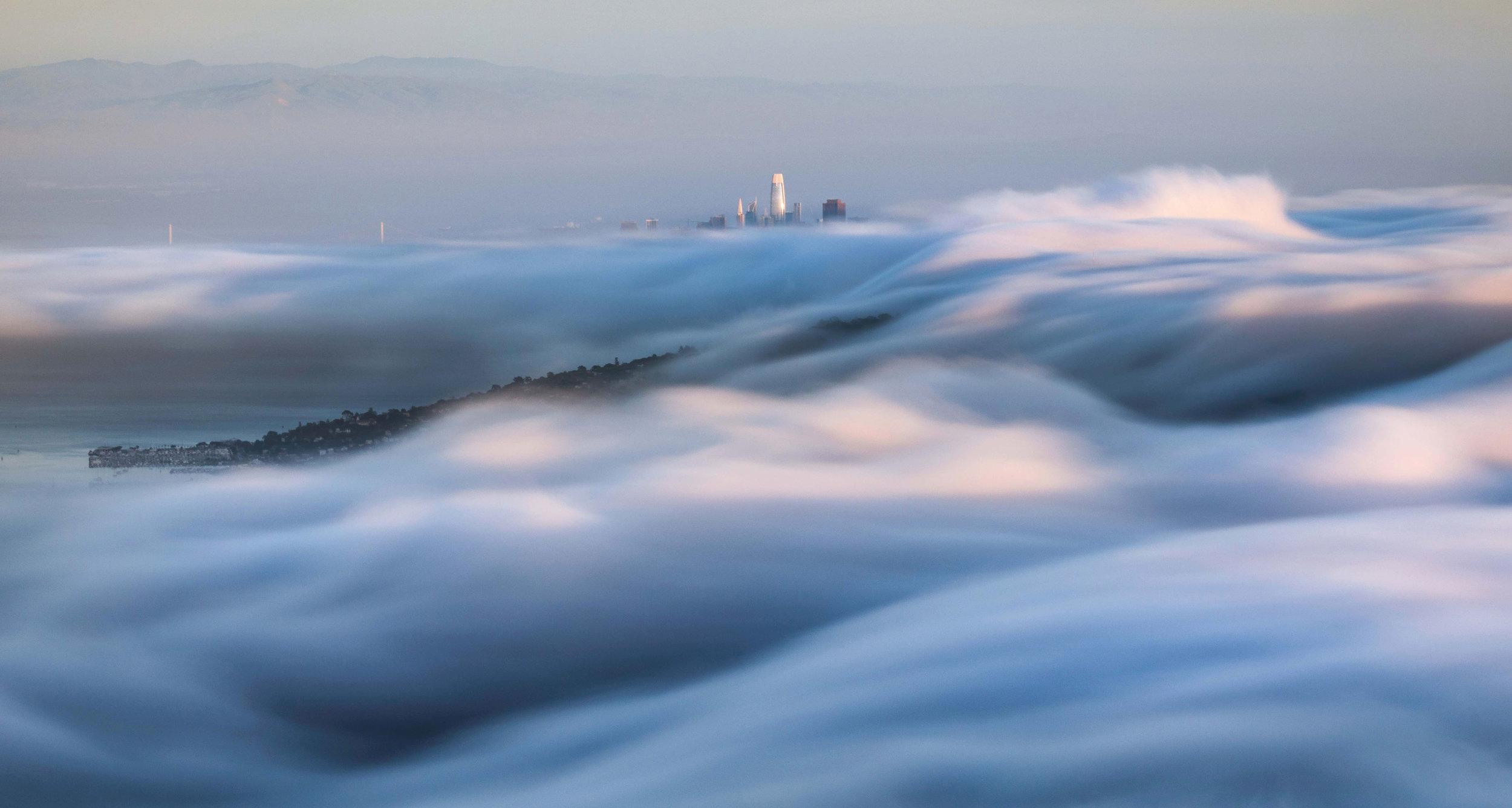 An ocean of fog