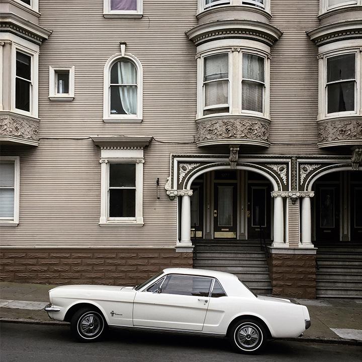 Mustang Fancy