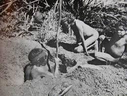 gathering food woman digging.jpg