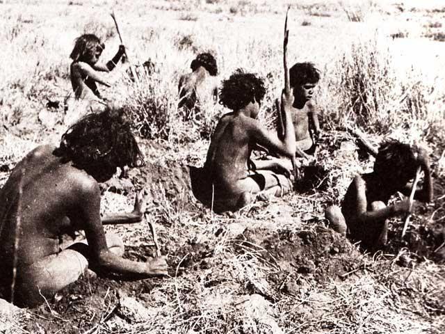 women digging yams.jpg