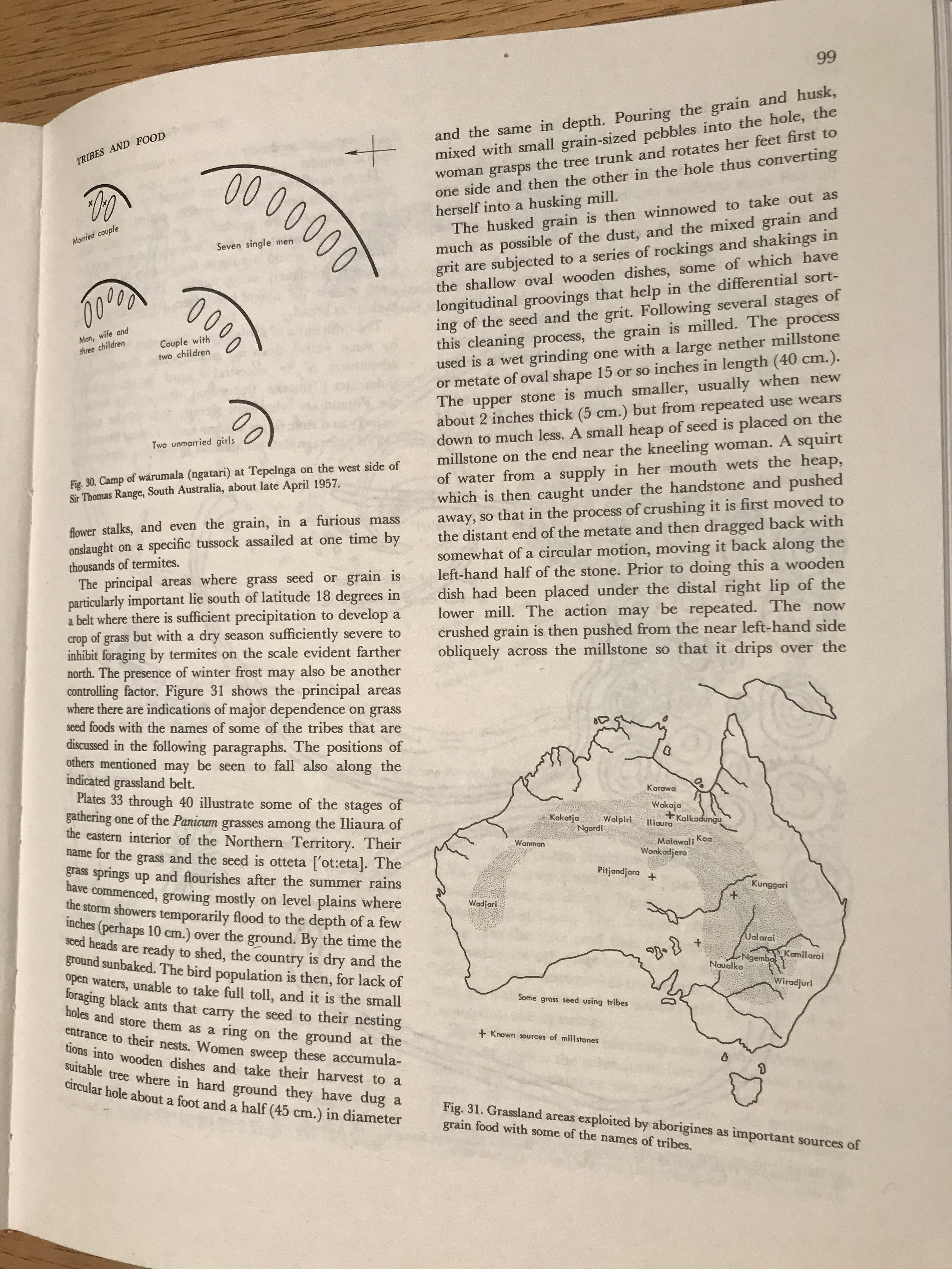 Figure 3 :  Original 'Tindales's Arc' from Norman Tindale,  Aboriginal Tribes of Australia,  UC Press, 1974, p99.