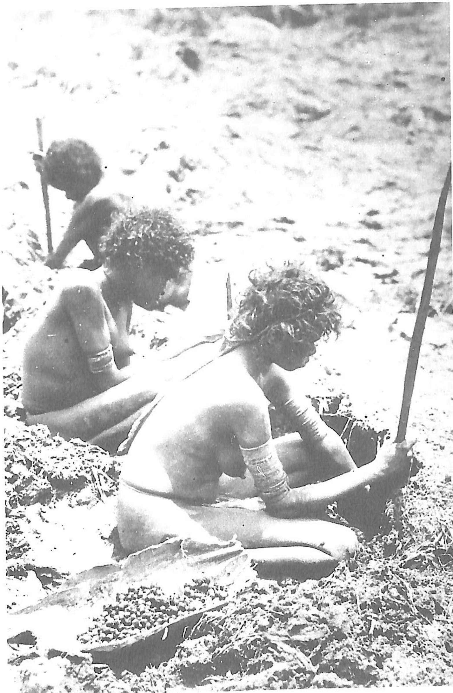 "- ""Pre-contact Aboriginal Australia is often seen as a paradigm of a hunter-gatherer culture"".Prof Amos Rapoport, Distinguished Professor Emeritus, Dept. of Architecture, University of Wisconsin Milwaukee, in Memmott, P., Gunyah Goondie + Wurley, QUP, 2007, Preface."