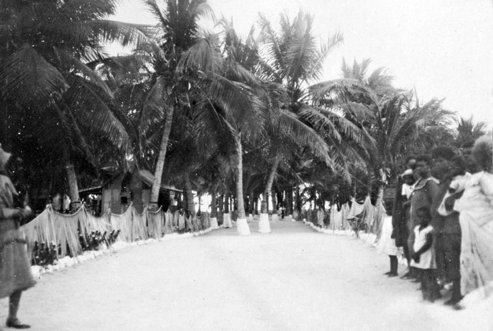 - The Torres Strait Islanders certainly did plant and cultivate coconuts, but why not their cousins, the Australian Aborigines?- An island in the Torres Strait in 1931 showing local coconut plantations.