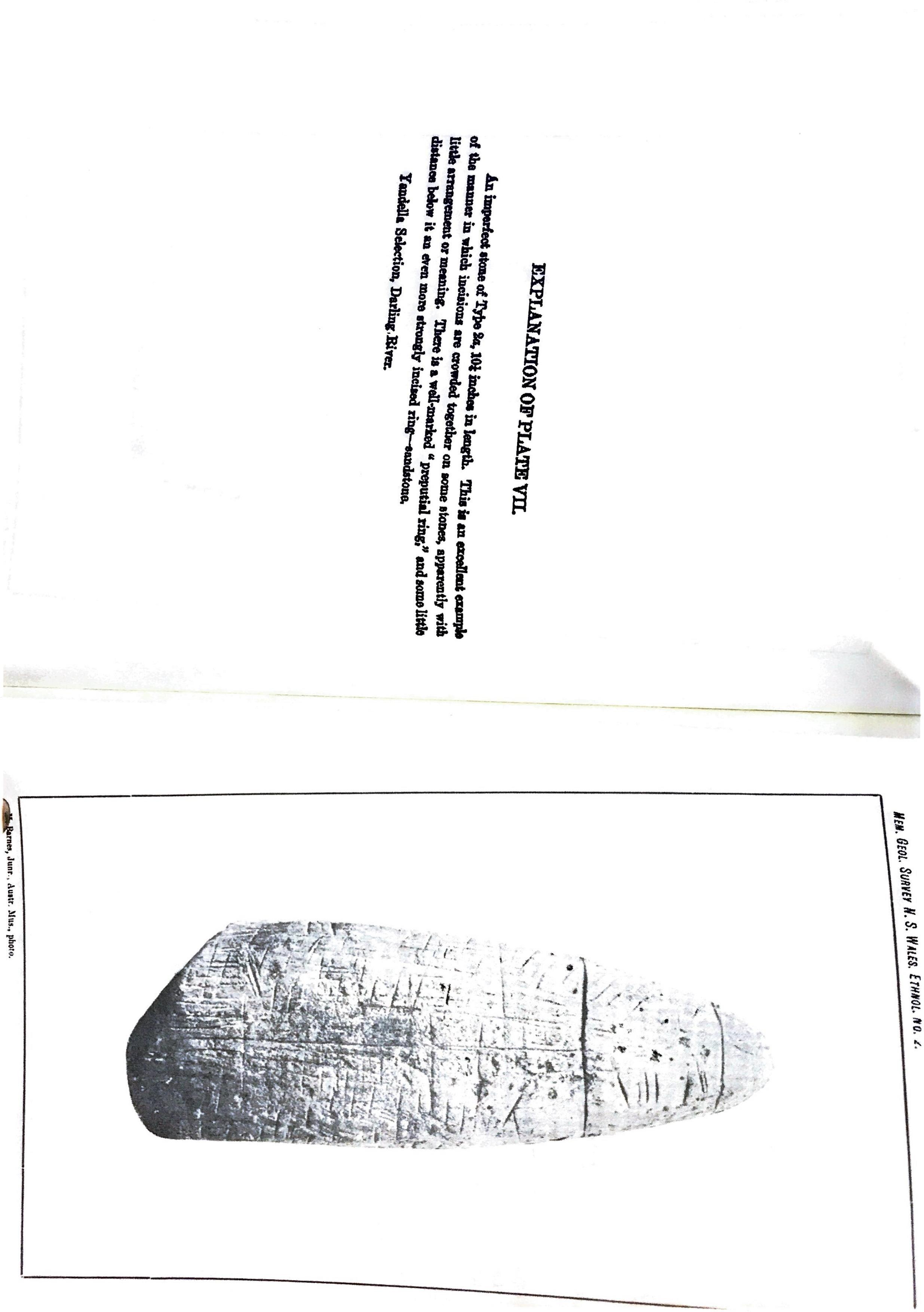 0001-11.jpg