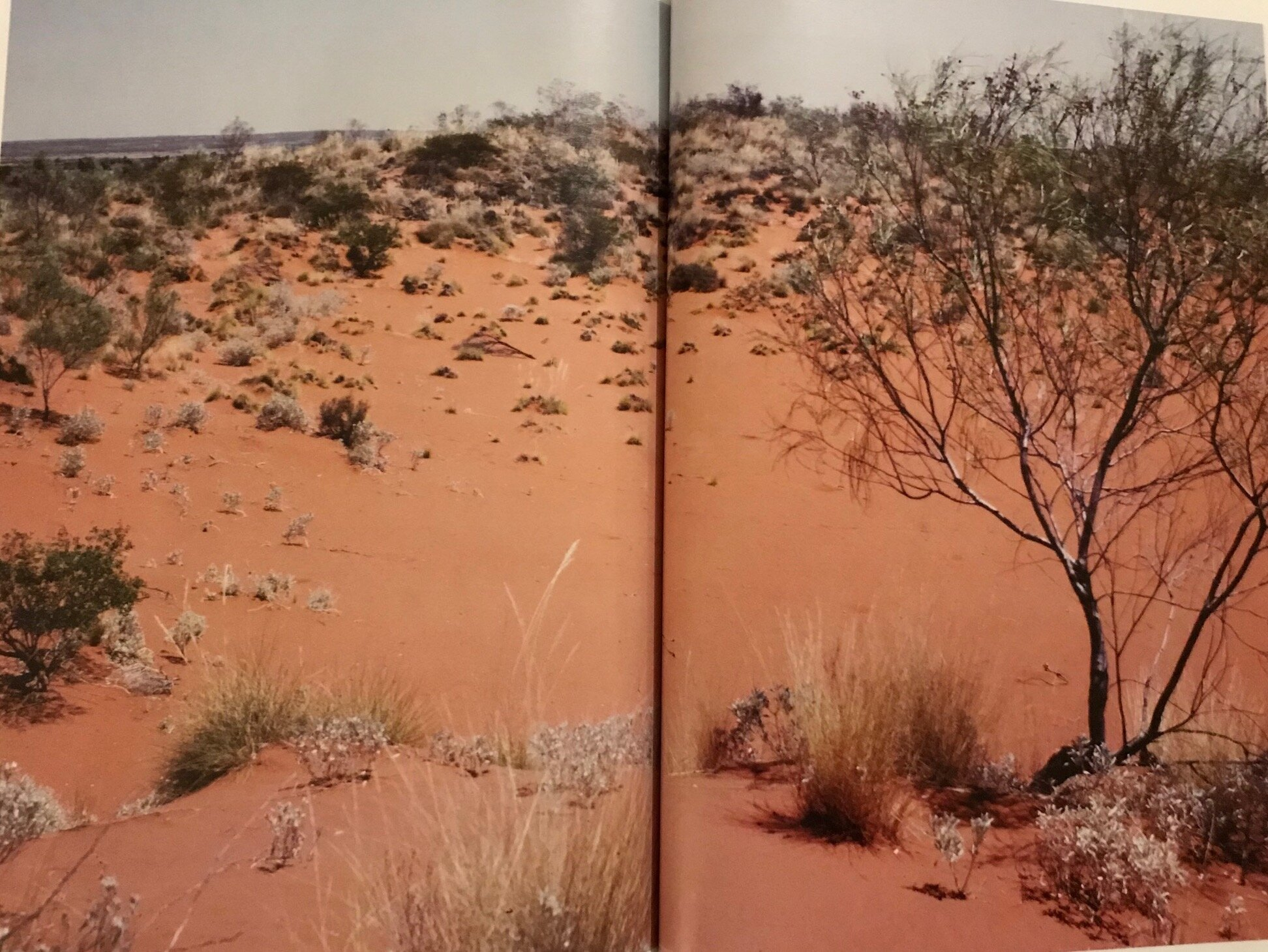 - Jukuna's country - the Great Sandy Desert in NW Australia - which is a tough environment but nevertheless, Jukuna and her family were able to survive here as hunter gatherers. It is not 'agricultural' country.