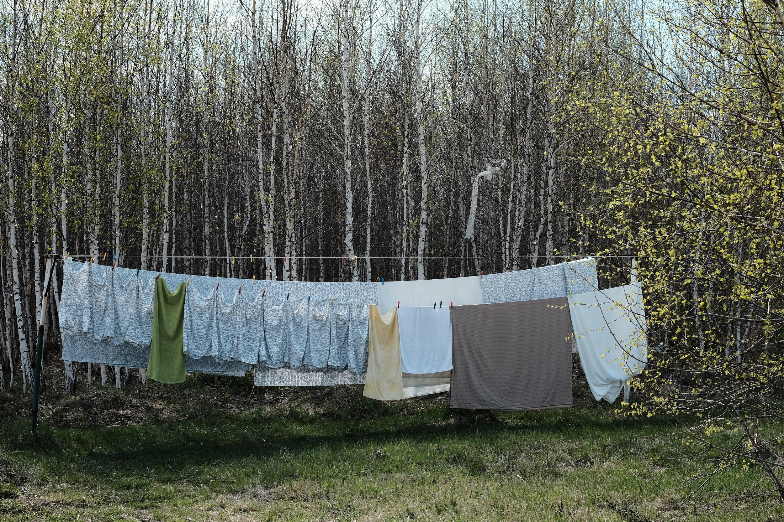 Laundry Powder -